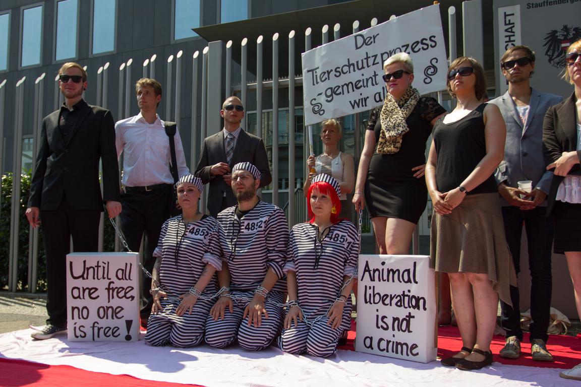 Soli-Demo für österreichische Tierrechtler_innen